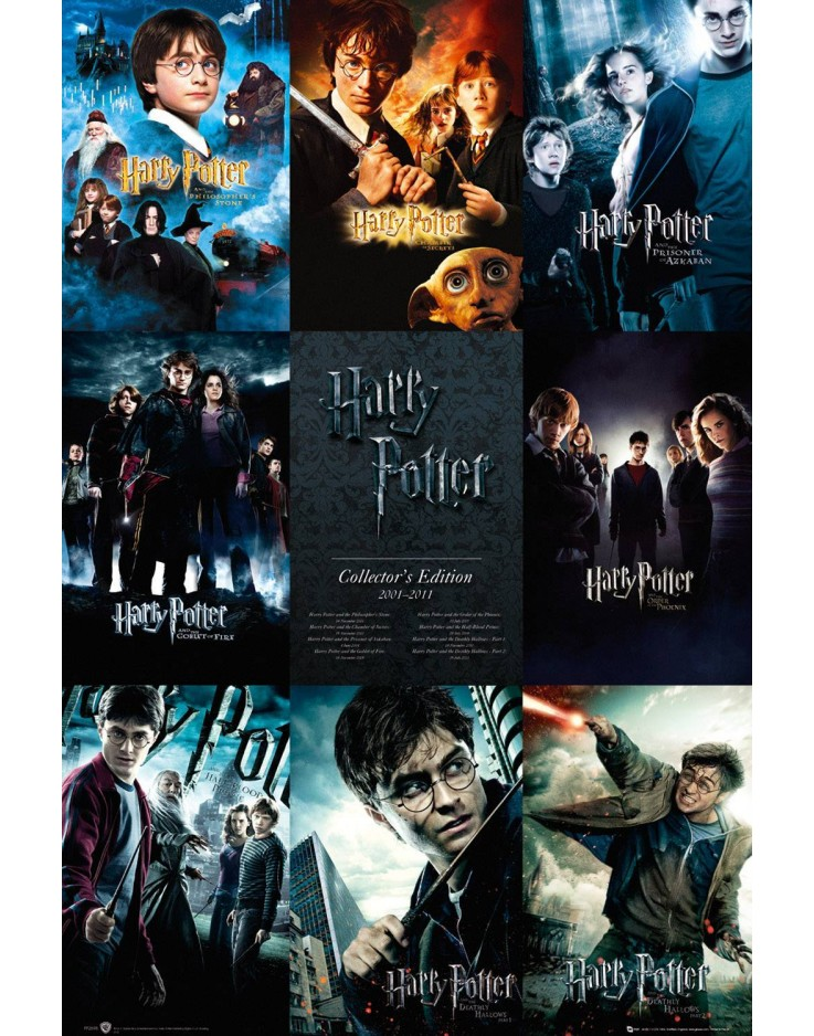 Harry Potter Collection Maxi Poster