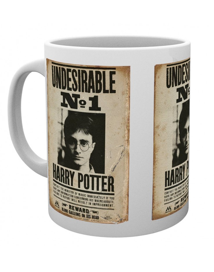 Harry Potter Undesirable Mug