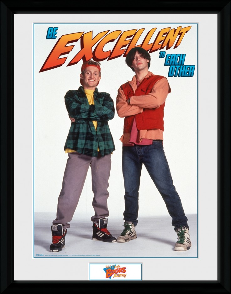 Bill and Ted Be Excellent Collector Print