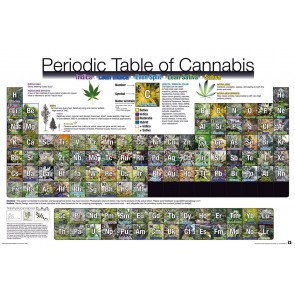 Periodic Table Of Cannabis Maxi Poster