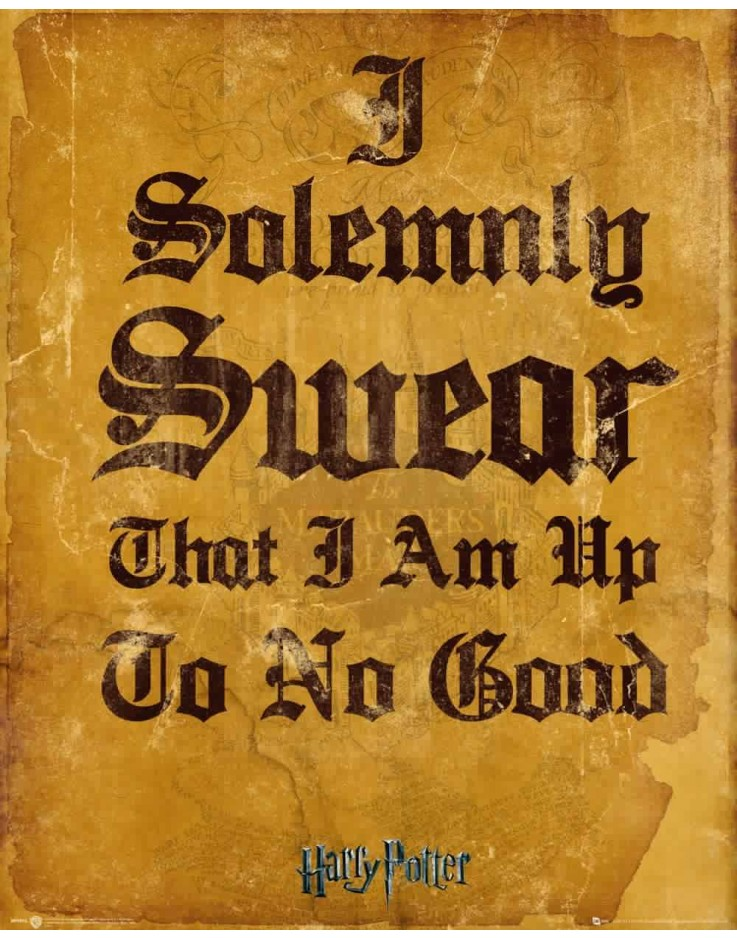 Affiche mini Harry Potter I Solemnly Swear 40 x 50 cm