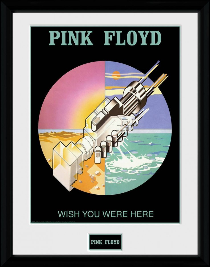 Photographie encadrée Pink Floyd Wish You Were Here 2 30 x 40 cm