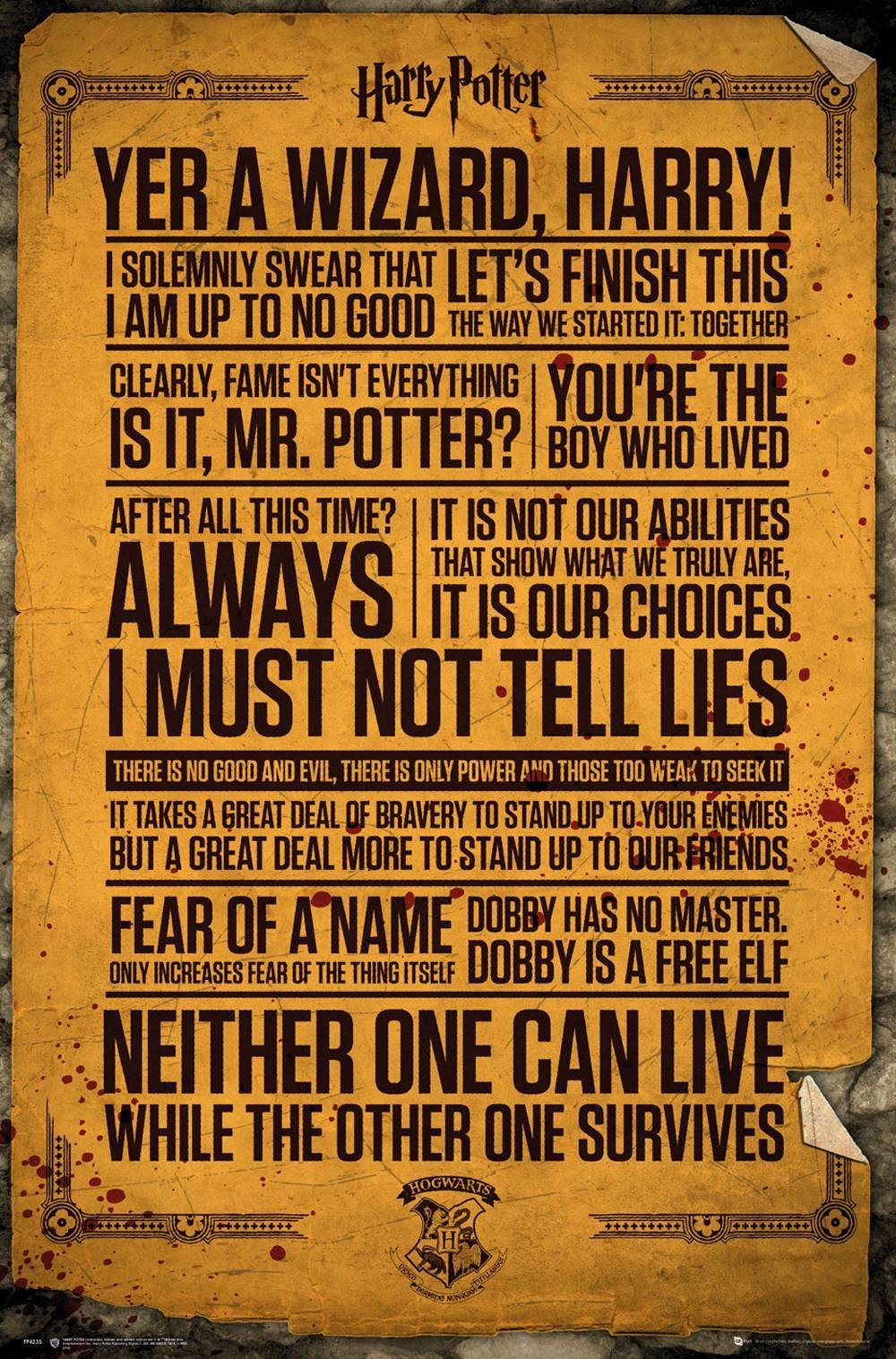 Maxi Poster Harry Potter Quotes