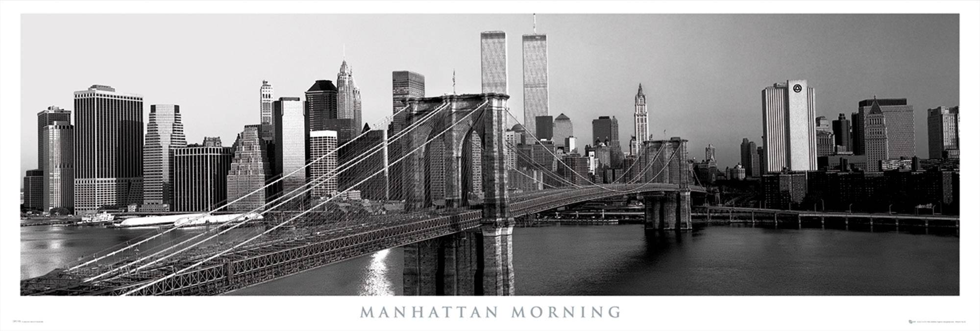New York Manhattan Morning Door Poster